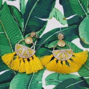☆ super cute earrings